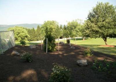 Plantings9